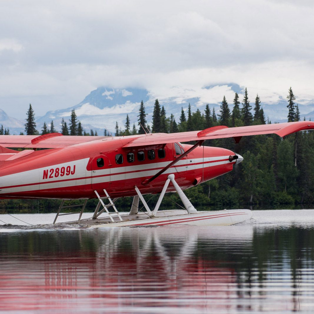 Seaplanes & Helicopters - Within The Wild